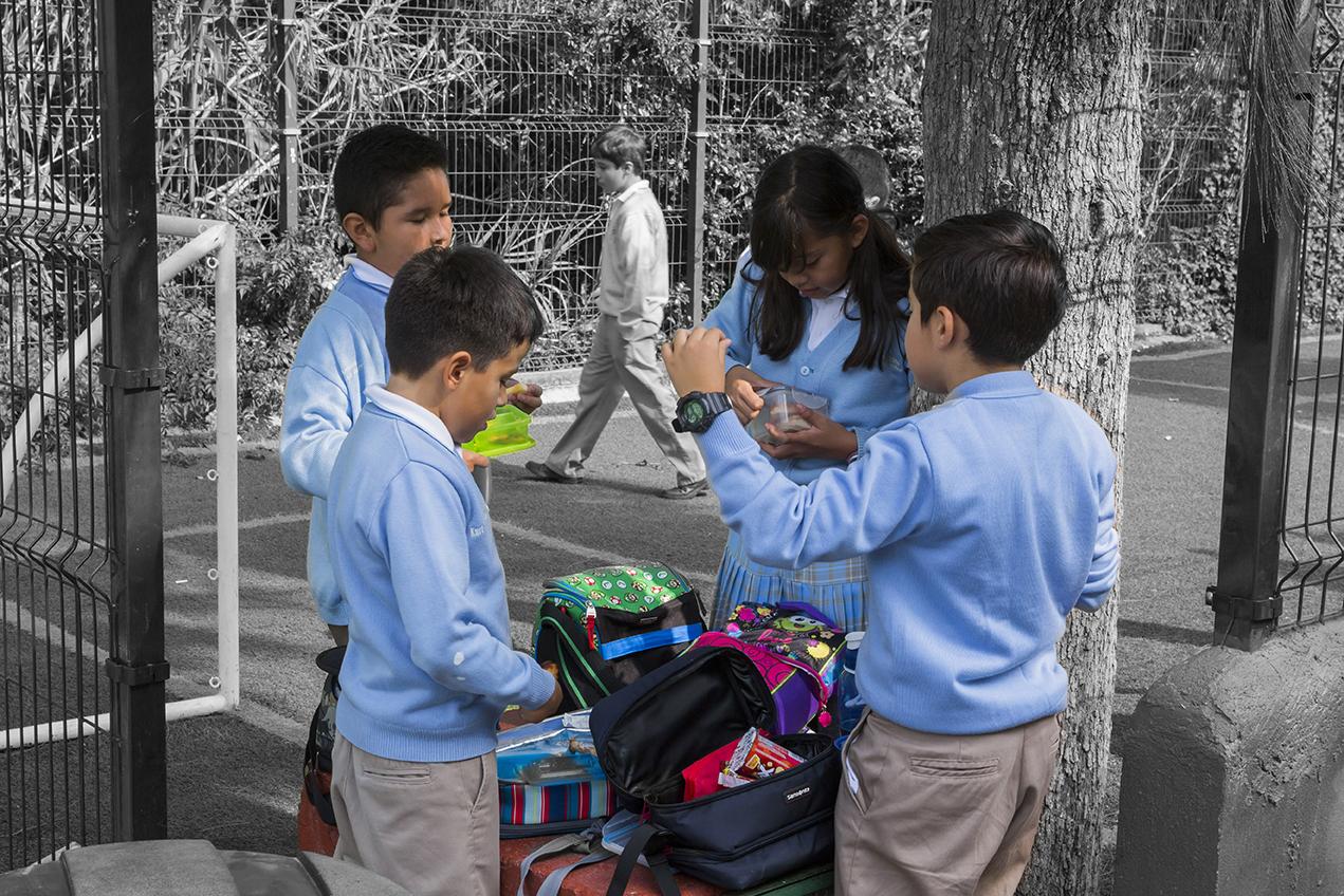 ¿Cómo fomentar la responsabilidad en nuestros hijos?